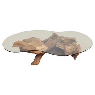 Mid-Century Root Table with Amoeba Glass