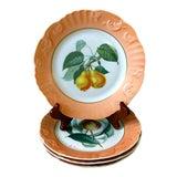 Image of Vintage Mottahedeh Summer Fruit Plates - Set of 4 For Sale
