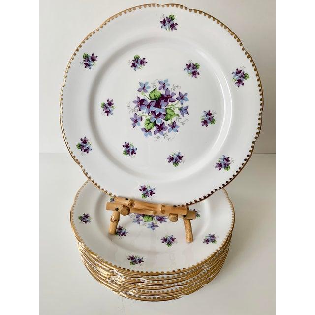 Royal Stafford Sweet Violets Gold Edge Salad Plates - Set of 10 For Sale - Image 11 of 11