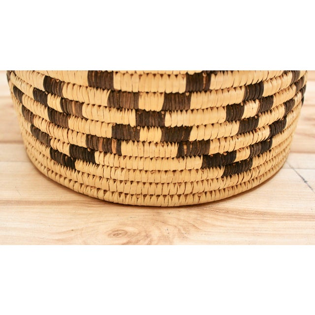 Tan Handwoven Tohono O'Odham Native American Basket For Sale - Image 8 of 10