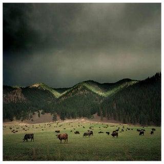 Michael Eastman Photograph For Sale