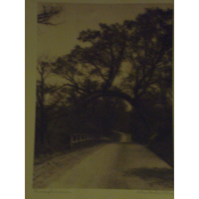 1920s Signed SepiaPhoto by Helene Gould Allene - Image 3 of 7
