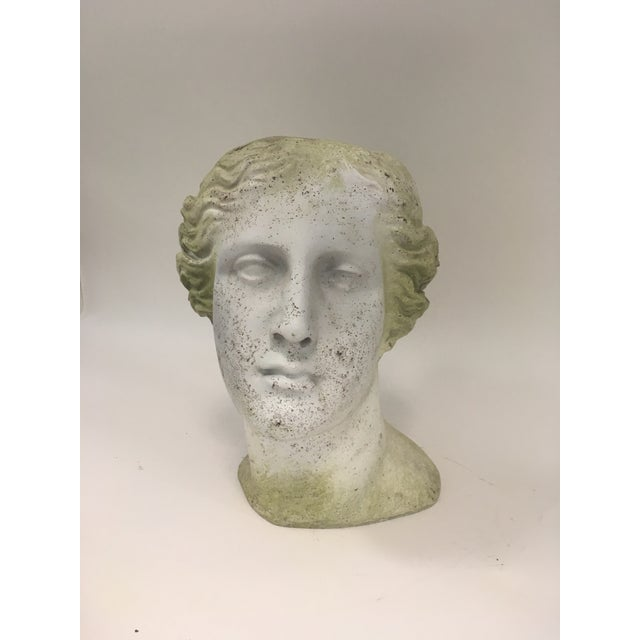 Moss Venus Bust Head Planter For Sale - Image 4 of 8