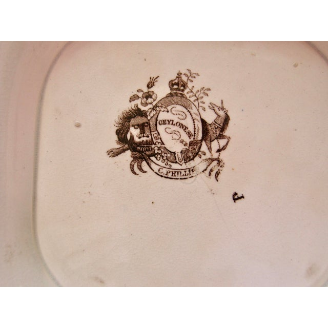 Ceramic Antique Brown & White Transfer Staffordshire Covered Vegetable For Sale - Image 7 of 8