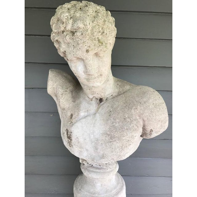 English Traditional Cast Stone Italian Bust of Hermes For Sale - Image 3 of 6