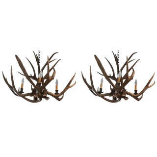 1930s Vintage Antler Chandeliers - A Pair For Sale