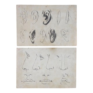 1890s Lithograph Drawing Lessons Nose Mouth Ear - a Pair For Sale