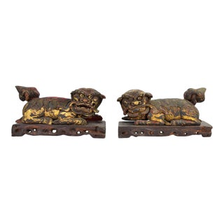 Large Antique Chinese Fu Foo Lions Temple Dogs Carved Gilt Wood - a Pair For Sale