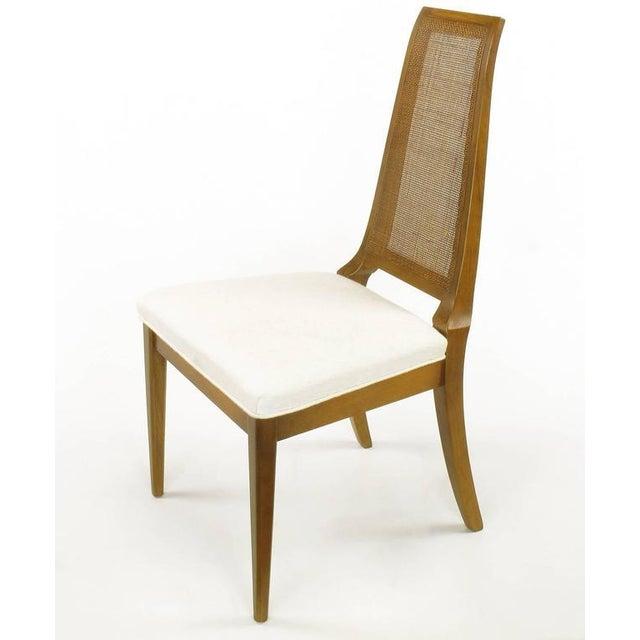 Sleek, circa 1950s Modern Walnut and Cane Dining Chairs - Image 4 of 10