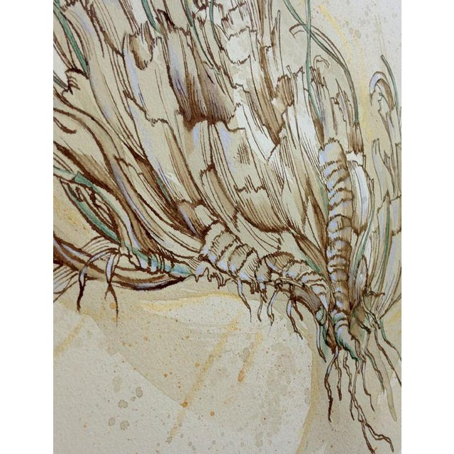 Contemporary Natural History Botanical Pen and Ink Drawing, Plant Life 2 by Kathleen Ney For Sale - Image 3 of 7