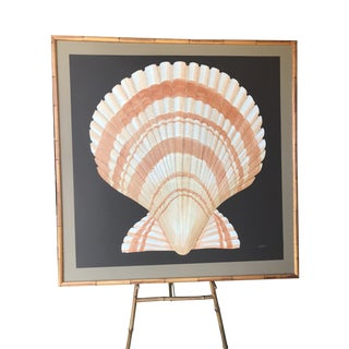 Vintage Coastal Regency Scallop Shell Painting For Sale