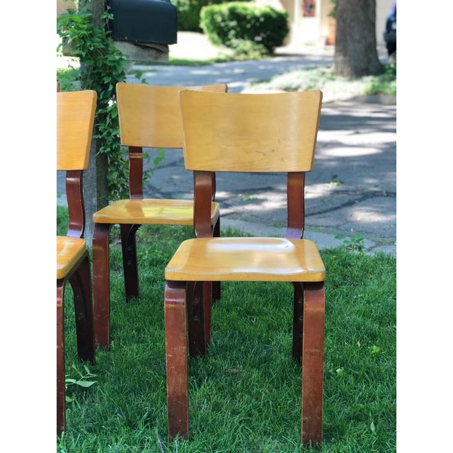 Bentwood Thonet Bentwood Chairs - Set of 4 For Sale - Image 7 of 8