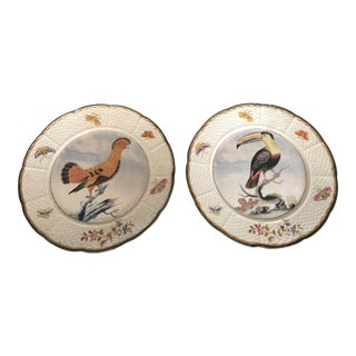 Chinoiserie Bird and Butterflies Plates With Toucan and Hoopoe ~ a Pair For Sale