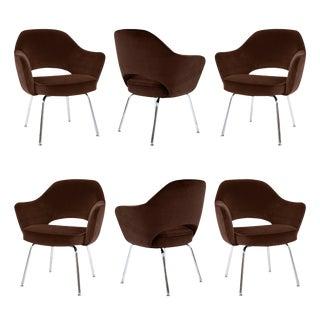 Saarinen Executive Arm Chairs in Espresso Velvet - Set of 6