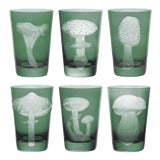 Image of ARTEL Mushrooms Collection Tumblers in Sage - Set of 6 For Sale