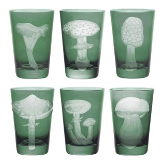 ARTEL Mushrooms Collection Tumblers in Sage - Set of 6 For Sale