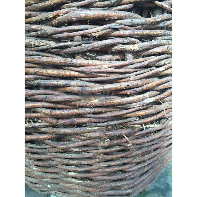 Antique 1800s Rustic Woven Demijohn Wine Jug For Sale - Image 4 of 4