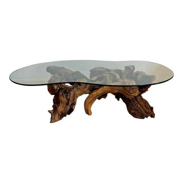 Vintage Burl Wood Root and Tempered Glass Coffee Table. For Sale
