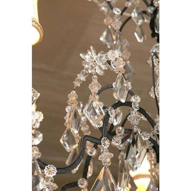 Black Holly Hunt Wrought Iron & Crystal Chandelier For Sale - Image 8 of 10
