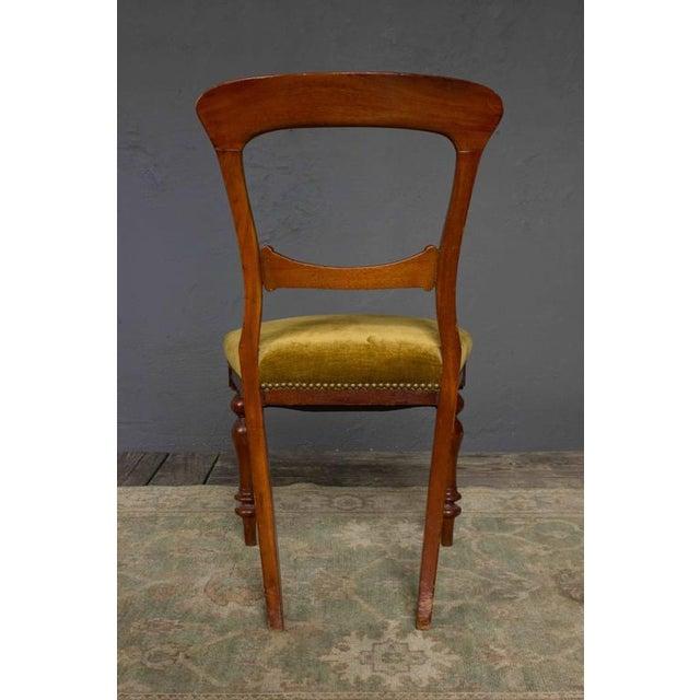 Single Mahogany Side Chair, William IV English - Image 6 of 11