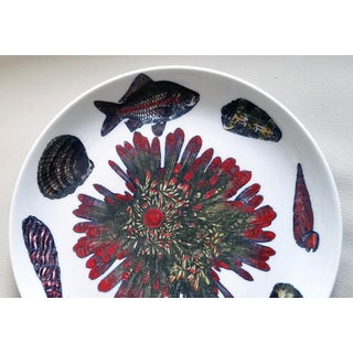 Vintage Piero Fornasetti Conchiglie Pattern Plate decorated with Sea Anemones, Urchins & Shells, Circa 1960-70's Preview