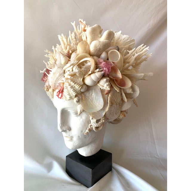 Hygiea Shell Head Sculpture For Sale In West Palm - Image 6 of 8