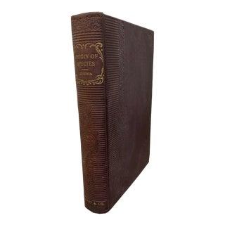 1900s Charles Darwin Origin of Species Cloth Binding Book For Sale
