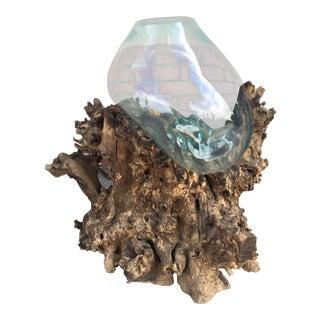 Large Driftwood Molten Glass Terrarium Fish Bowl