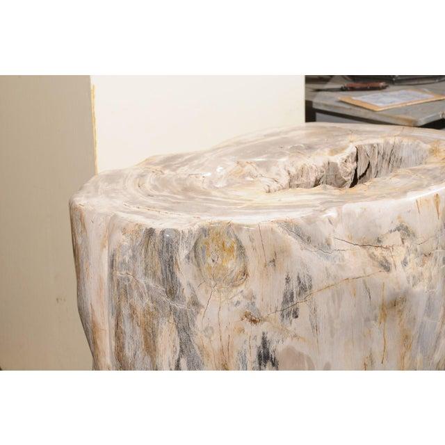 White Impressively Large Petrified Wood Table Base For Sale - Image 8 of 12