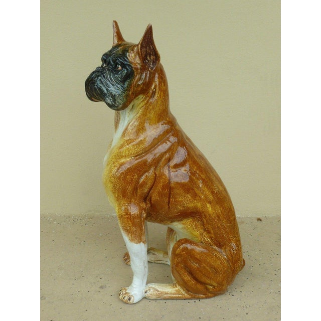 This is a large glazed Italian terra cotta model of a sitting boxer dog. The piece is from the 1970s.