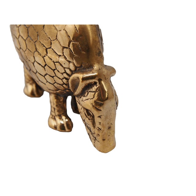 Small brass armadillo figurine. A beautiful piece that will add to your decor!