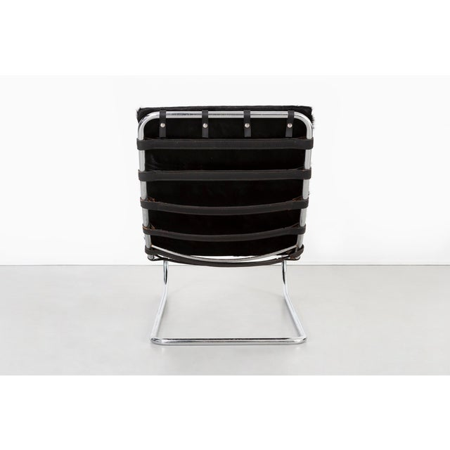 Animal Skin Mies Van Der Rohe Mr Chaise for Knoll Reupholstered in Brazlian Cowhide For Sale - Image 7 of 11