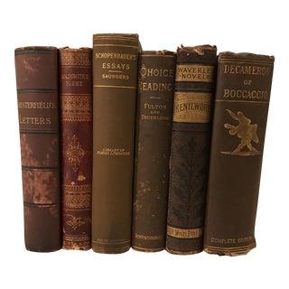 Decorative Brown Designer Books - Set of 6