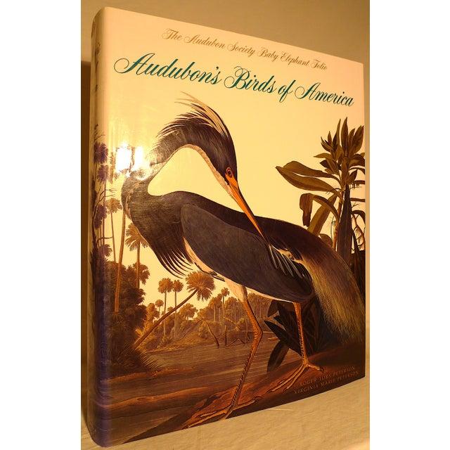 1990s 1990s Baby Elephant Illustrated Folio Book, Audubon's Birds of America For Sale - Image 5 of 12
