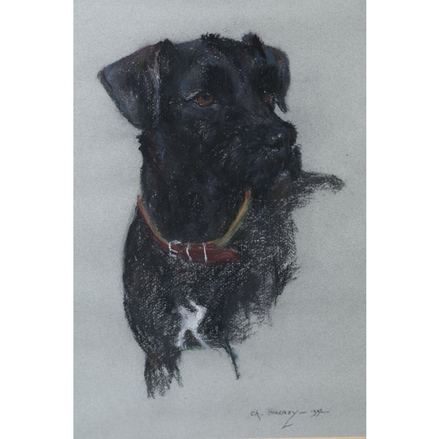 Labrador Retriever Original Pastel Drawing For Sale In Houston - Image 6 of 6