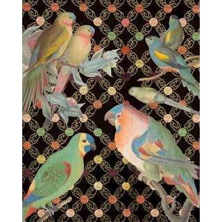 Colorful Bird Collage Unframed Print For Sale