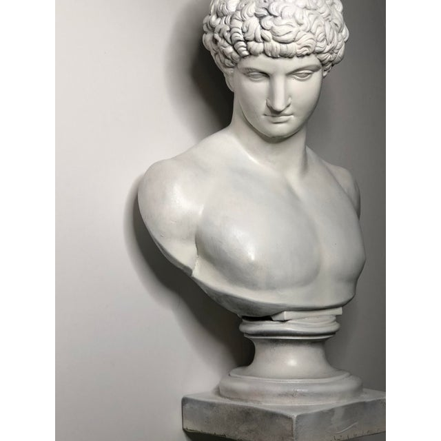 1940s Vintage Neoclassical Style Plaster Bust of Apollo Sculpture For Sale - Image 11 of 12