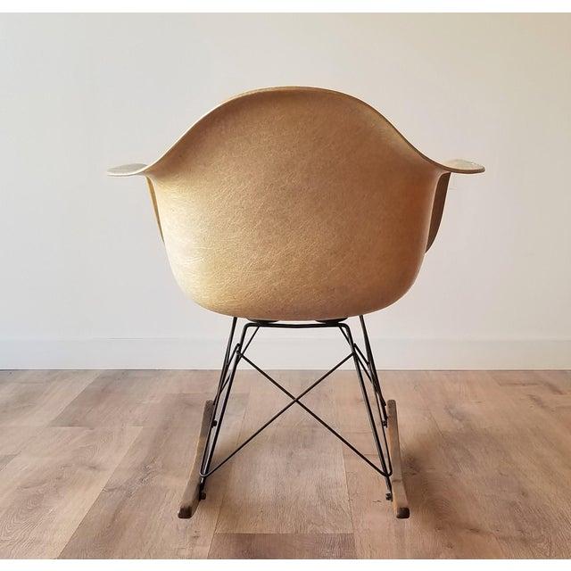 1960s 1960s Eames RAR Rocking Chair in Ochre Light for Herman Miller For Sale - Image 5 of 13