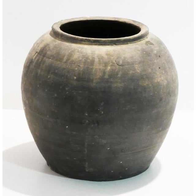 Newer black pot. Looks vintage, so it could be that piece that looks expensive without the price. There are some chips.