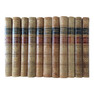 Vintage French Leatherbound Books - Set of 11