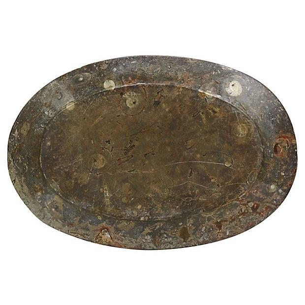 Polished marble platter with natural ammonite fossils. Very heavy piece, carved from a single slab of marble. Encased in...
