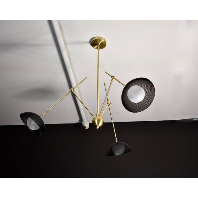 Brass Insetto Articulating Chandelier in Enameled Mesh & Brass by Blueprint Lighting For Sale - Image 8 of 9