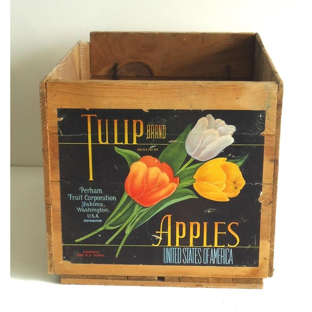 Vintage Tulip Apple Crate - Image 2 of 7