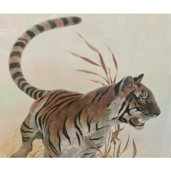 "Copper Framed John Ruthven ""Bengal Tiger"" Lithograph From 1970s Safari Series For Sale - Image 5 of 9"