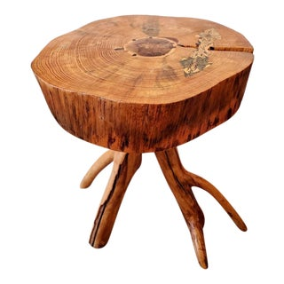 Natural Live Edge Tree Slice Inlaid Side Table With Root Base - Signed For Sale