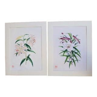 Vintage Giclee Botanical Flower Print For Sale