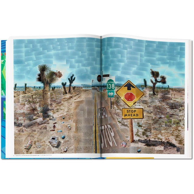"""Autographed David Hockney """"A Bigger Book"""" Painting Collection with Book Stand Collector's Edition For Sale - Image 9 of 13"""
