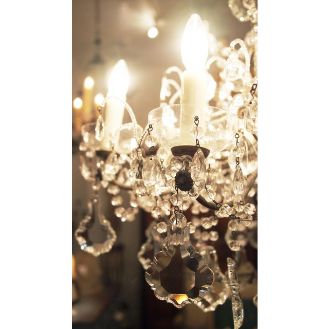 Eight Light Crystal Chandelier with Flowers on Beaded Stems For Sale - Image 4 of 10