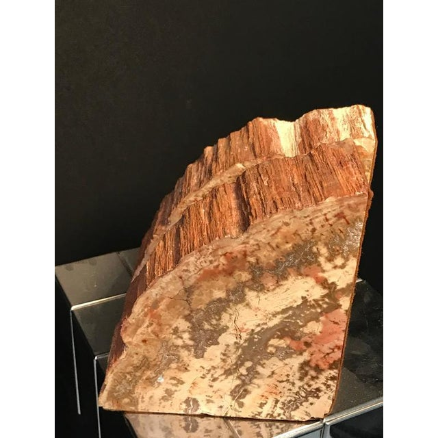 Contemporary Petrified Wood Bookends - a Pair For Sale - Image 3 of 8