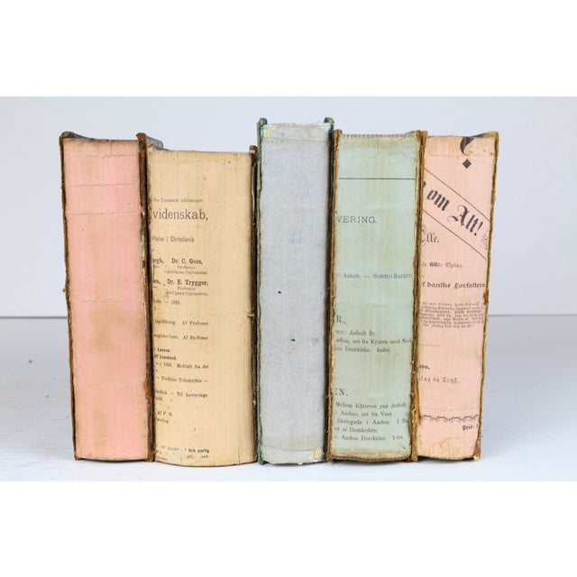 Deconstructed Antique Books - Set of 5 - Image 3 of 4